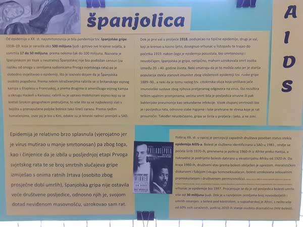 Španjolska gripa i SIDA